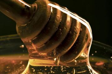 Honeycov