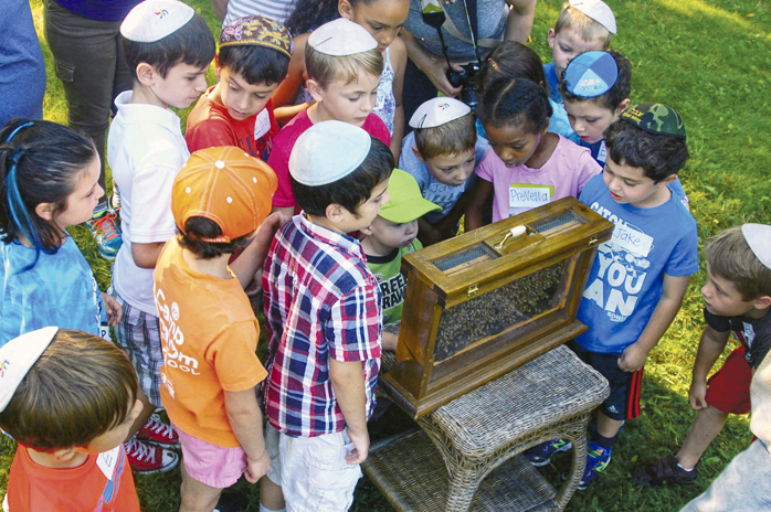 Hillel Academy students visit Pittman Apiaries as part of the Propolis Project. The school's theme this year is Bee The Change You Want To See, with a focus on plants, pollinators and Jewish ecological values.
